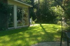 Ochtendzon in de tuin